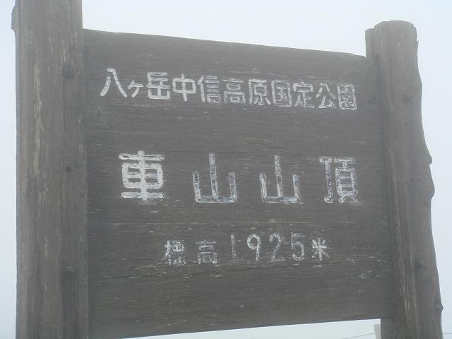 Dsc04913